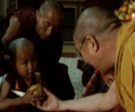 reïncarnatie van Khensur Rinpoche
