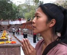 Onder de Boeddhaboom