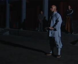 Seven years in Shaolin